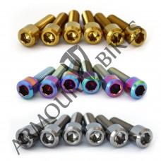 Mertic Titanium stem bolts M6x1x20mm MTB oil slick gold silver 6pcs